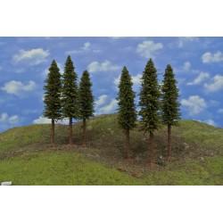 13/S2K/HO-Fichten mit Wurzeln und trockenen Zweigen auf Baumstämmen,18-19cm,6St
