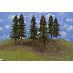 20S3KHO-Fichten mit Wurzeln und trockenen Zweigen auf Baumstämmen,23-26cm,6St