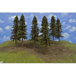 20S3KHO - Spruces with roots, height 23-26cm, 6pcs