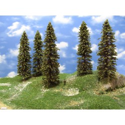 18S3HO - Spruces,height 23-26cm, 9pcs