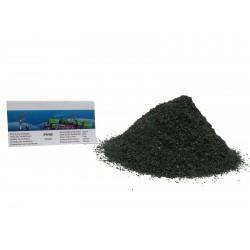 HO,TT,N - zelený,barva borovice, 250ml (P9/05)