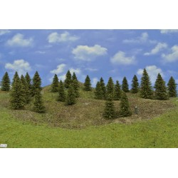 Forest HO26 - Spruces, height 5-10cm, 25pcs