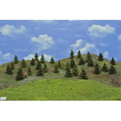 Forest TT21 - Spruces, pines, height 3-5cm, 30pcs