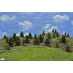 Forest TT22 - Spruces, pines, height 4-6cm, 25pcs