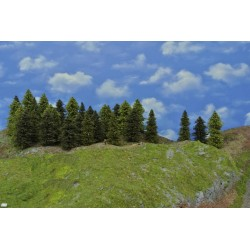 Wald N19,Bäume,Fichten,Kiefern,Lärchen, 3-13cm,45 Stück