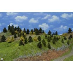 LES N21, smrky, borovice, modříny 3-6cm ,65ks