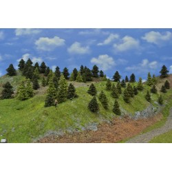 Wald N22,Bäume,Fichten,Kiefern,Lärchen, 3-6cm,65 Stück