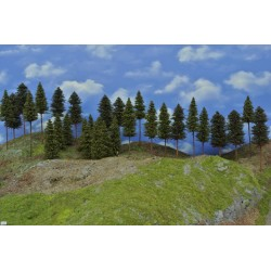 Forest N23 - Spruces, pines, height 8-19cm, 30pcs