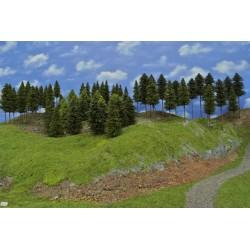 Wald N12, Bäume, Fichten, Kiefern, Lärchen, 18-19cm,70 Stück