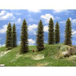 16S2TT-stromy,smrky,výška 18-19cm,12ks