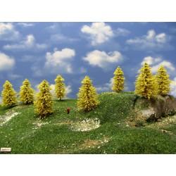 30M1TT-Bäume,Lärchen gelb,Höhe 6-9cm,20 Stück